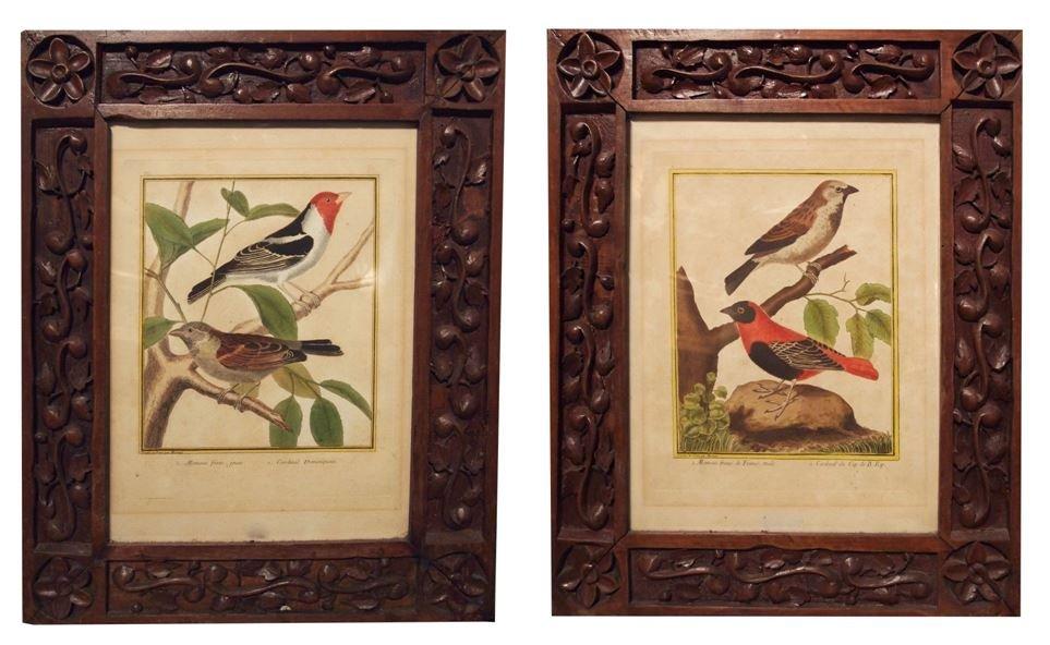 A Pair Of Engravings, Birds