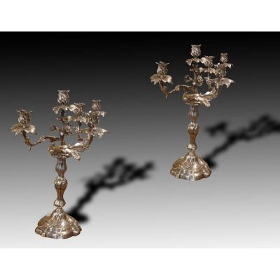 Candelabra Pair Of Louis XV Style