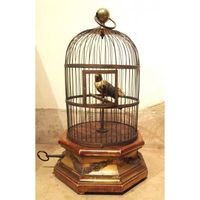 Songbird Cage