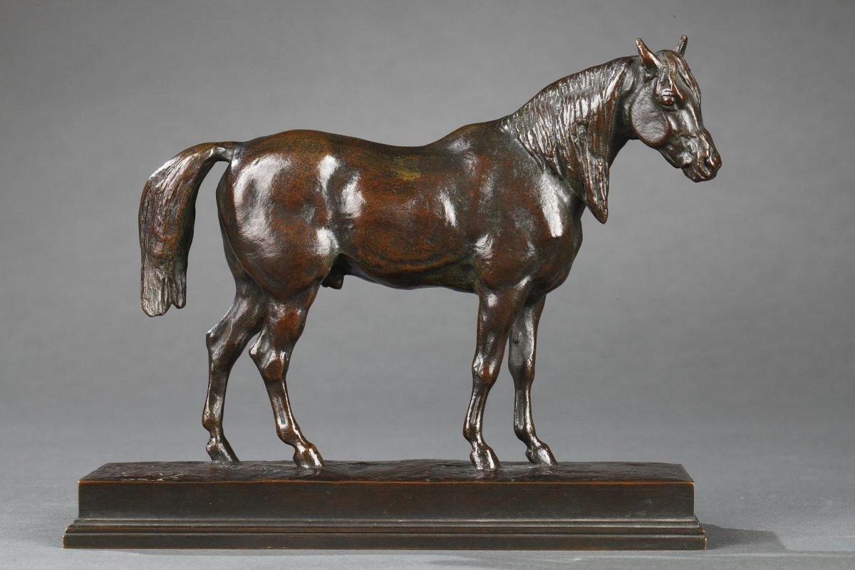 Demi-sang Tête Levée - Antoine-louis Barye (1796-1875)