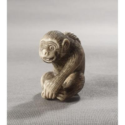 Netsuke Ivory Monkey Art 1165-2