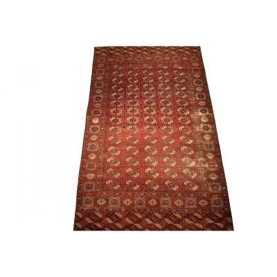 Antique Bokhara Turkmen Tekke Carpet 344 X 202 Cm In Wool