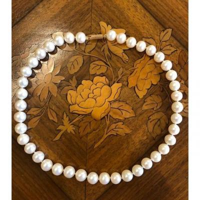 Collier Choker En Perles Blanches