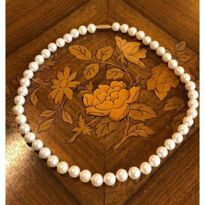 Collier  De Perles Blanches