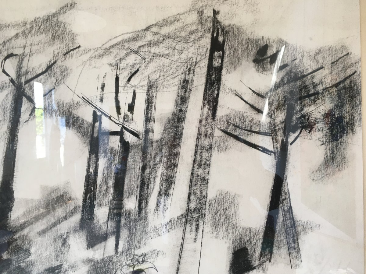 Pierre Théron. Original Charcoal Drawing. Pines On The Arcachon Basin.-photo-3