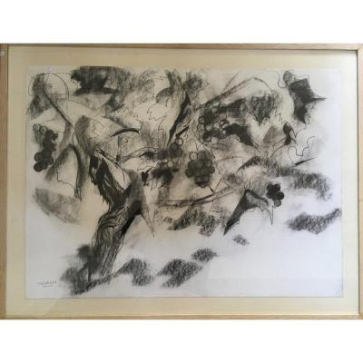Pierre Theron. Original Drawing Around 1960. The Vine, Grapes, Study On The Wine, Bordeaux
