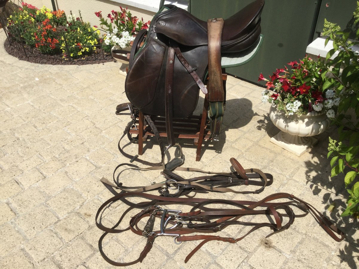 Kieffer Brand Riding Saddle Complete With Two Nets And One Bridle