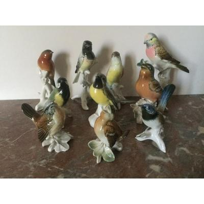 10 Porcelain Birds From Karl Ens Sold Together Or Individually