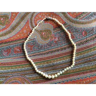 Necklace Of Fine Falling Pearls Length 47cm, 75 Pearls