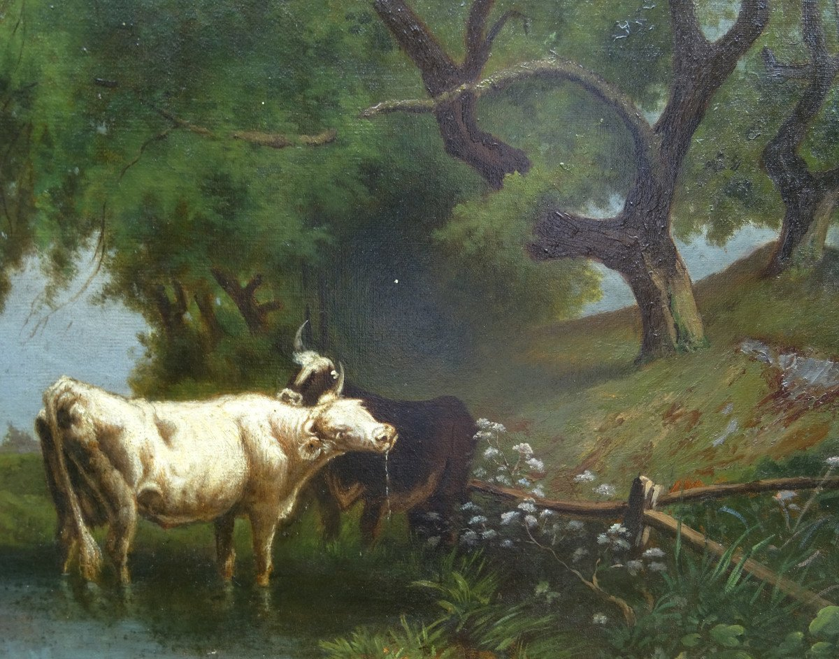 Table Of Cows Animated Landscape Oil On Canvas From The End Of The XIXth Century-photo-2