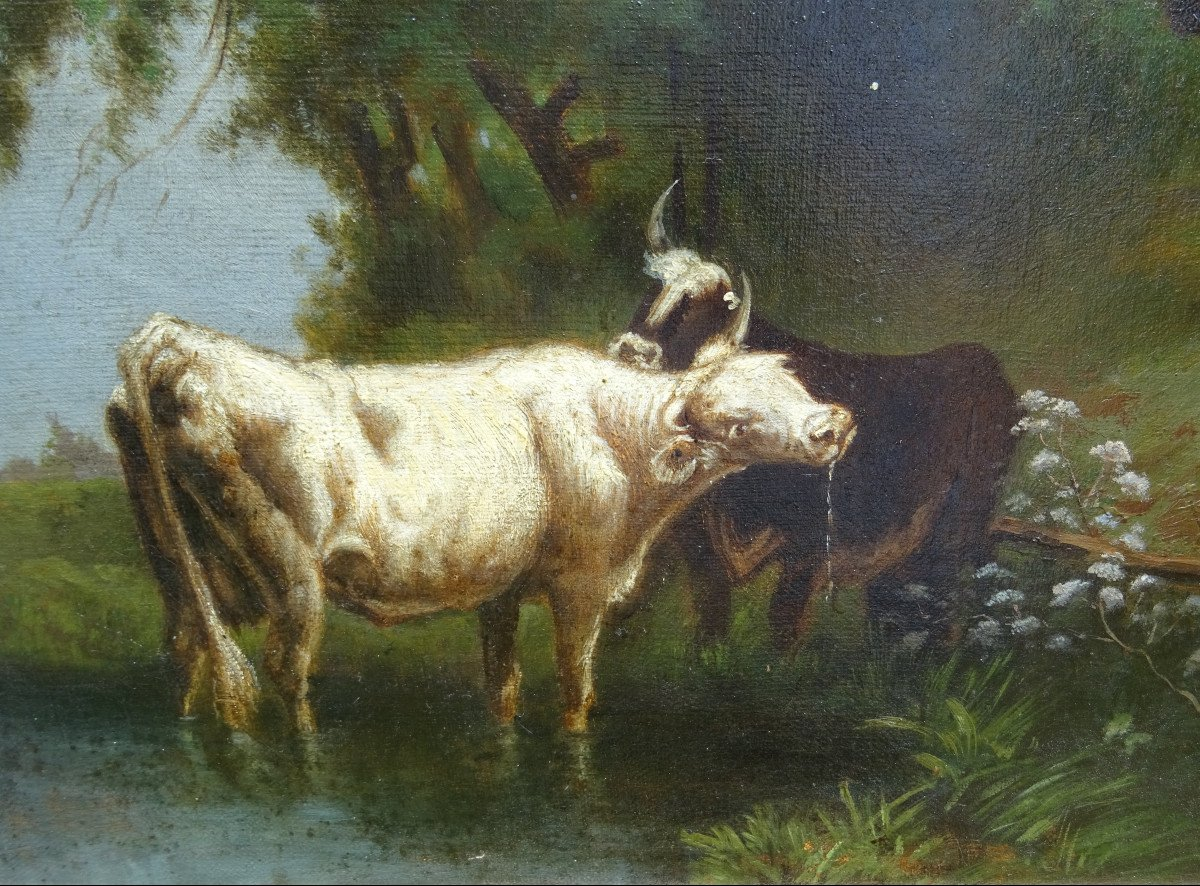 Table Of Cows Animated Landscape Oil On Canvas From The End Of The XIXth Century-photo-4