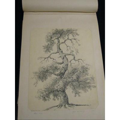 Large Book 60 Lavis & Drawings 1856 Paysages De France - 2 Or 3 Artists - Cc - Debouloz.