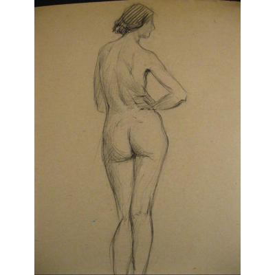 Academic Drawing Of Female Nude - 1900-1920 24,5x31 Cm
