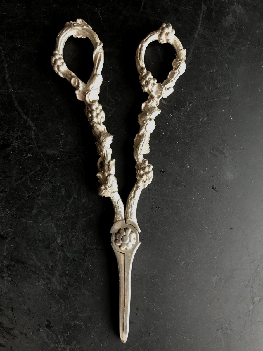 Great Pair Of Scissors Grapes Silver English-lion Passing