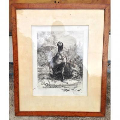 Bracquemond 1899 - Couple De Faisans-gravure - Estampe - Eau-forte Sur Papier Vergé
