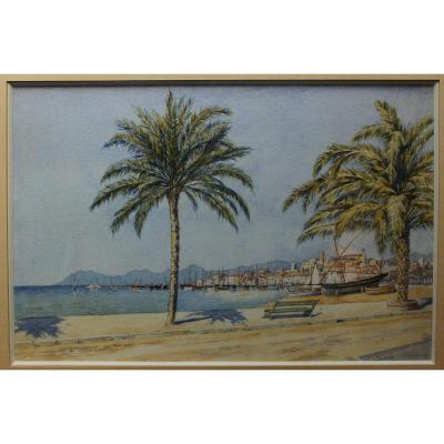 Félix Choisnard (1846-1924), Cannes Le Suquet