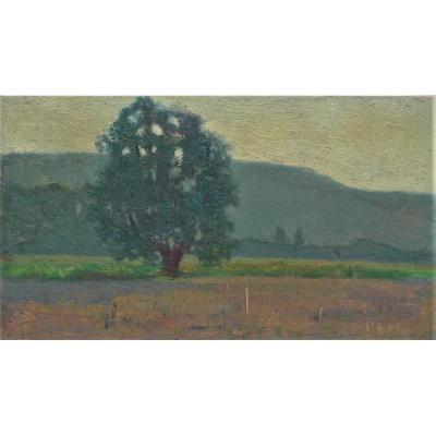 Raymond Thibésart (1874-1968), arbre dans un paysage
