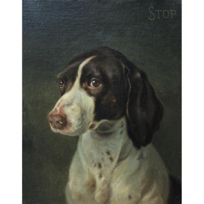Portrait Of A Dog - Edmond Adolphe Rudaux (1840-1908)