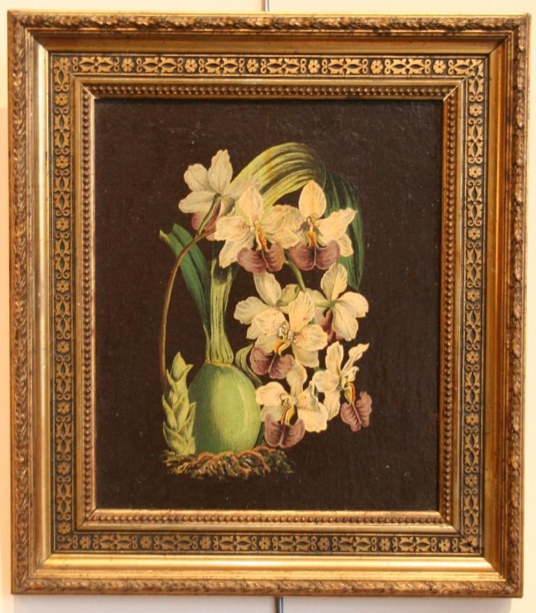 Peinture de fleurs tableaux natures mortes for Cadre pour tableau peinture