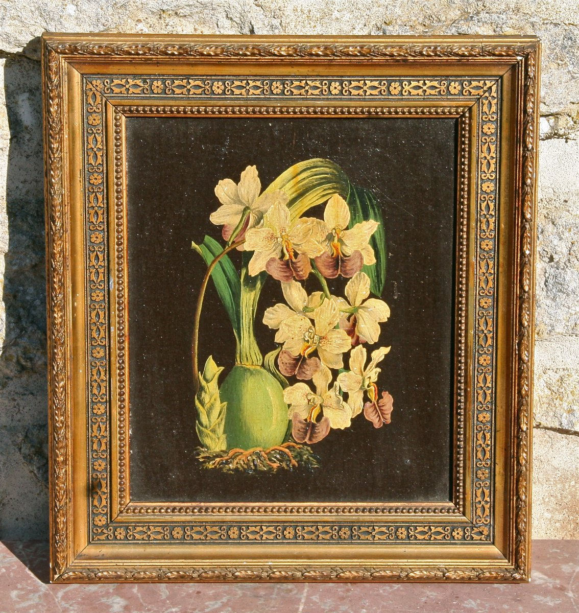 Tableau XIXème étude d'Orchidée