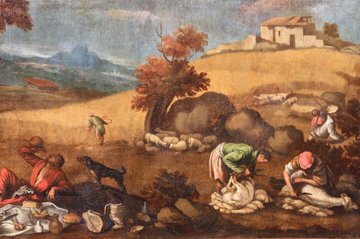 Grande Peinture XVIIème école De Francesco Bassano La Tonte Des Moutons-photo-5