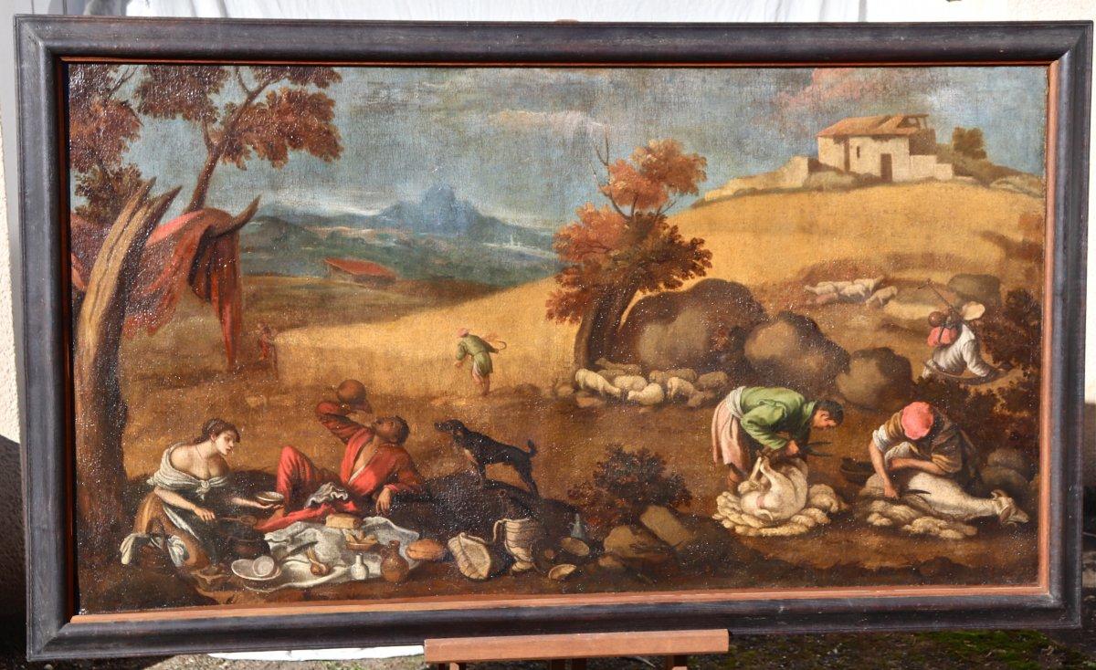 Grande Peinture XVIIème école De Francesco Bassano La Tonte Des Moutons