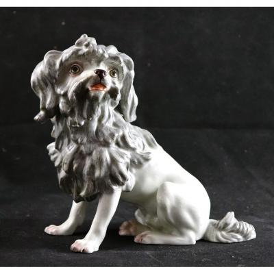 Nineteenth Porcelain Dog From Paris