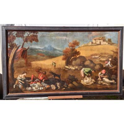 Great Painting XVII School Of Francesco Bassano The Sheep Shearing