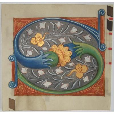 """Initial Letter """" S """" , Cut From An Antiphonary, On Parchment . Framed"""