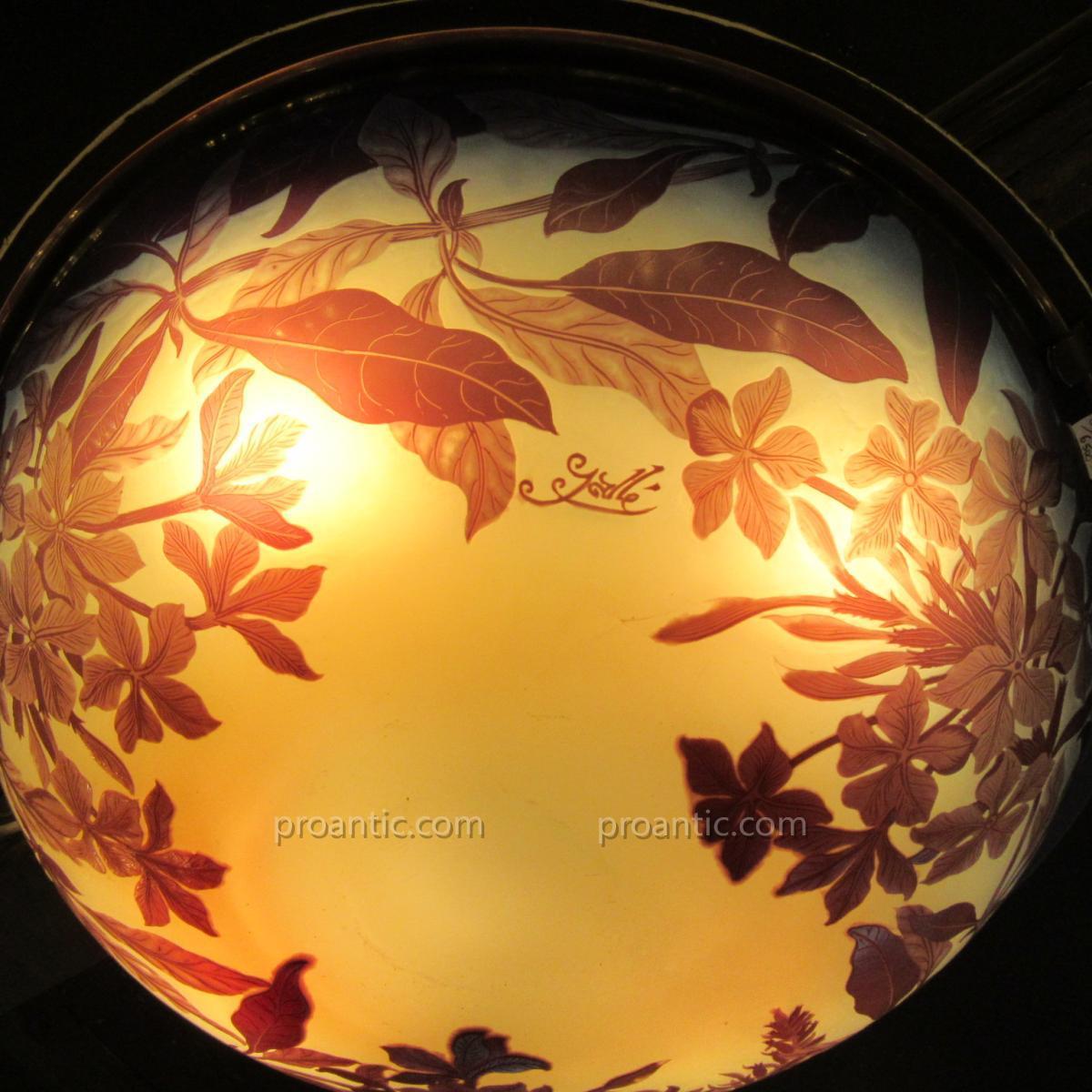Emile Galle Ceiling Light
