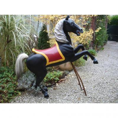 Poneys Cheval De Manege