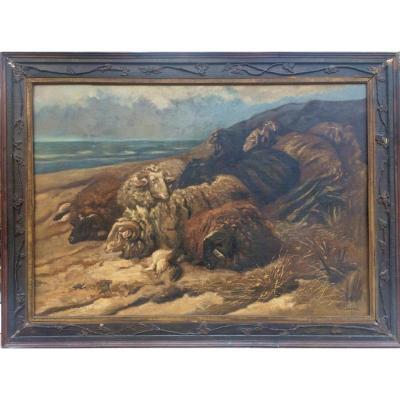 Moutons en bord de mer - 1913