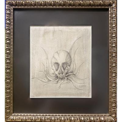 Frederic Heydt - Vanity : Skull Of A Vampire On Plant, Drawing Signed Dated 1965 - Memento Mori