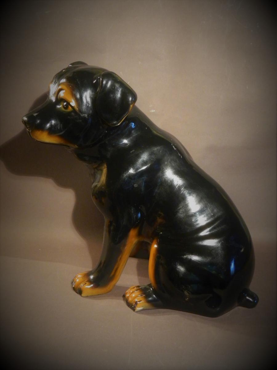 Glazed Terracotta Lifesize Rottweiler Dog, 60's