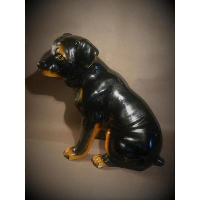 Glazed Terracotta Lifesize Rottweiler Dog, 60's