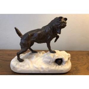 Animal Bronze, Dog, Arson, XIXth Century