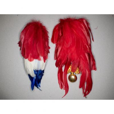 Two Willow Plumes. A Tricolore And A Scarlet With His Cockade And His Pattern In Grenada.