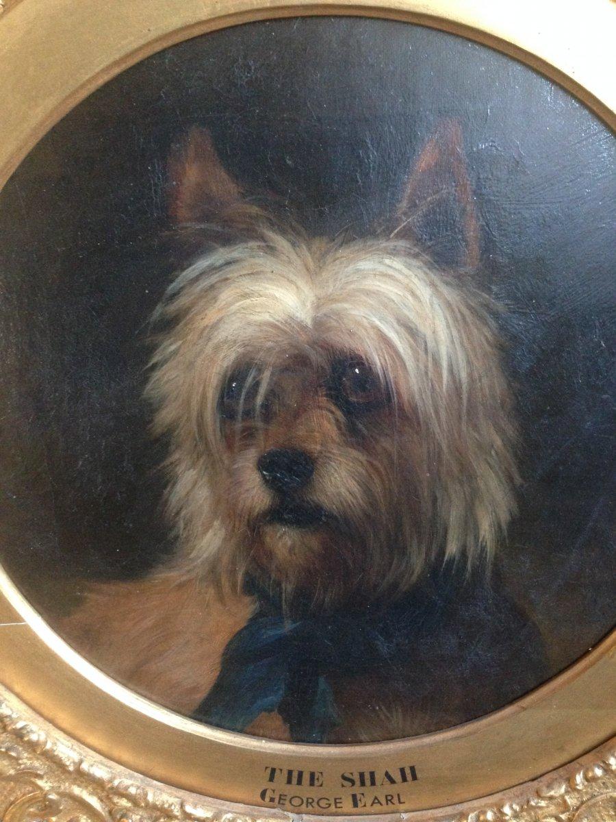 Portrait De Chien Par George Earl