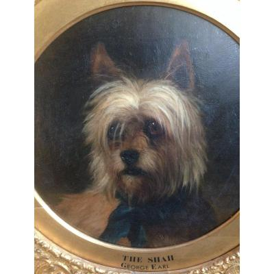 Dog Portrait By George Earl