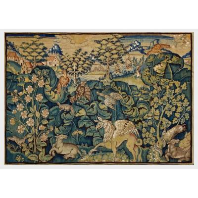 Aristoloche Oudenaarde Tapestry XVI Century.