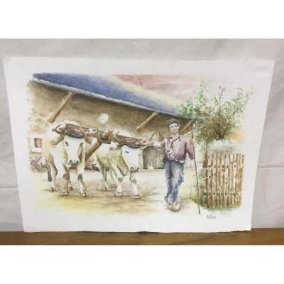 Watercolors By Mr. Gillotte