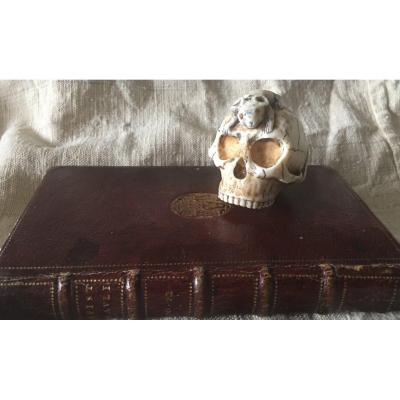 Ivory Skull With Mouse On Top An Gold Tooth  Memento Mori Style