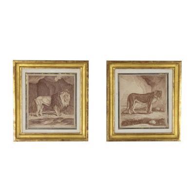 Paire De Gravures Figurant Un Lion Et Une Lionne, XIXe Siècle - Ls4348201