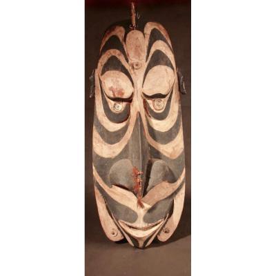 Un Bouclier Original Très Intéressant Et Décoratif De La Rivière Sepik