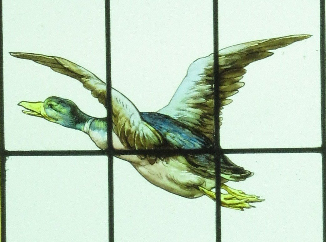 Stained Glass - Stained Glass - Duck Flight-photo-2