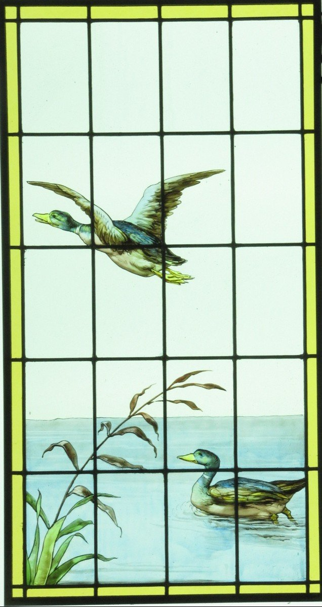 Stained Glass - Stained Glass - Duck Flight