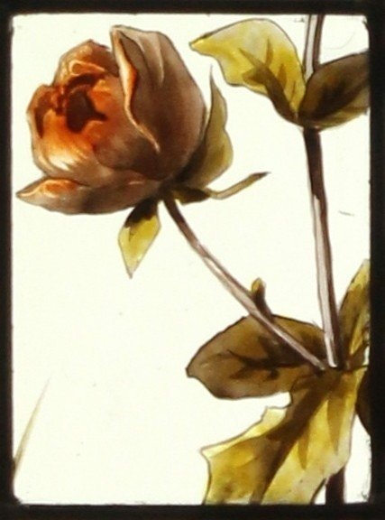 Stained Glass - Peonies-photo-4