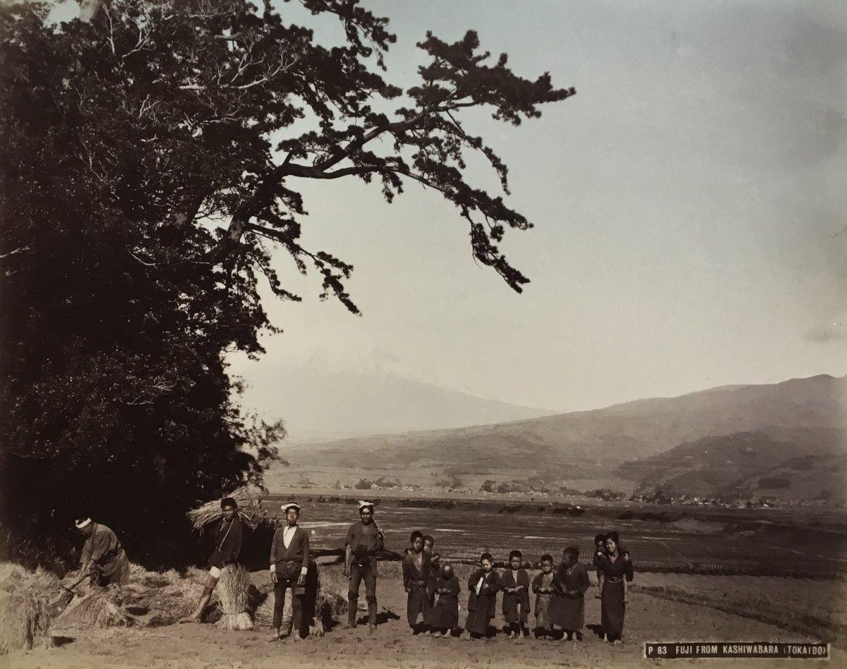 Kusakabe Kimbei (1841-1934)  Fuji From Kashiwabara Tokaido  Vers 1880  Tirage Albuminé