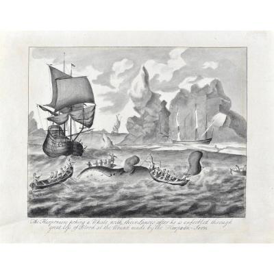 John Allen (actif Au XVIIIe Siècle), Pêche à La Baleine En Arctique, Plume Et Lavis d'Encre