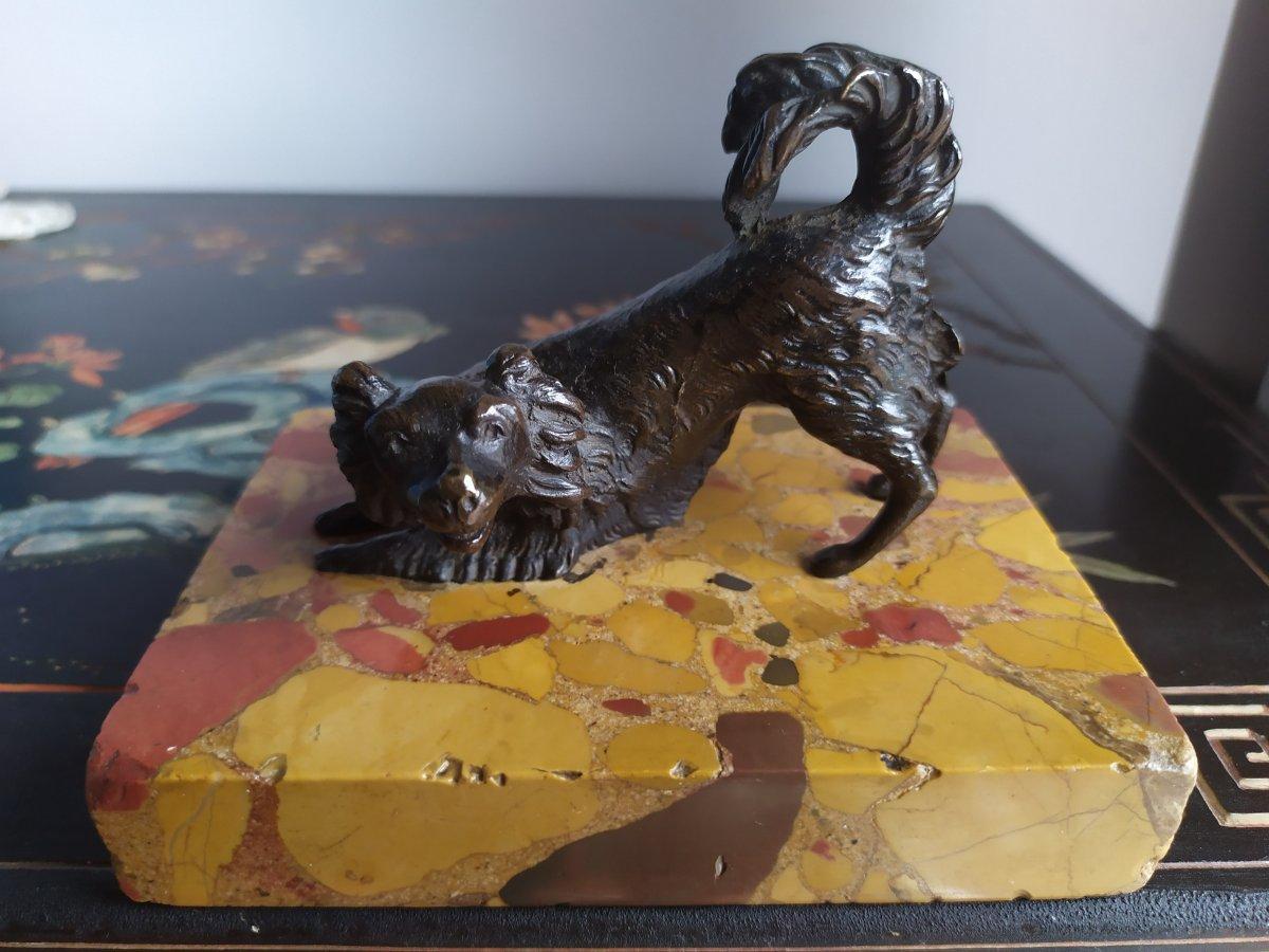 Chien «cavalier King Charles» En Bronze- XIXème Siècle.